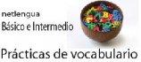Netlengua - prácticas de vocabulario
