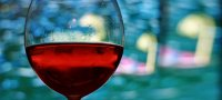 Spanish & Wine Culture