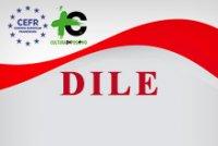 Diploma de Lengua y Cultura Española