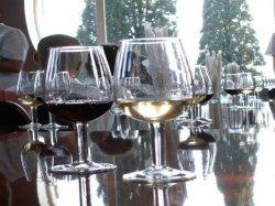Días de vino y castañas